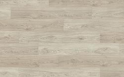 Laminate Flooring - Asgil Oak - 8mm Pro